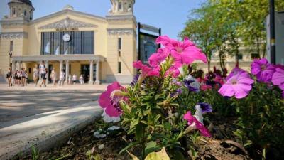 Virágok a csabai vasútállomásnál. Fotó: Hrabovszki Róbert