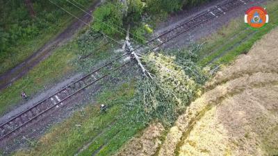 Kidőlt fa a síneken. Forrás: Körös Mentőcsoport
