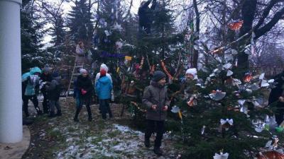 Teljes pompában várják a karácsonyt a jaminai Jézus Szíve Templom körül álló fenyőfák. Az Ökumenikus Advent első vasárnapján az immár hagyományos karácsonyfa díszítő verseny résztvevői csinosították ki őket