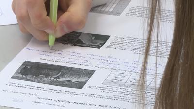 A Gyulai Erkel Ferenc Gimnázium megyei versenyén a tanulóknak olyan genetikai témájú feladatokat kellett megoldani, amelyek a gondolkodóképességüket tették próbára. Fotó: Kugyelka Attila