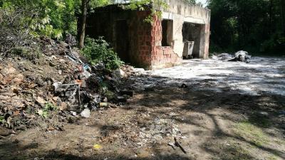Az épület mellett látszó fertőtlenítőszer réteg alatt feküdt az elhullott ló még pénteken délelőtt. Fotó: behir.hu