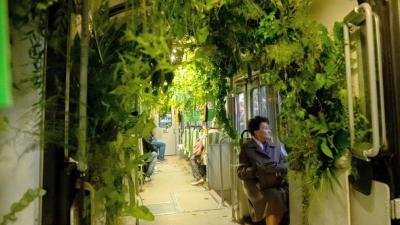 Szmogellenes kampány keretében járja az utcákat Katowicében a növényekkel díszített villamos  (MTI/PAP/Andrzej Grygiel)