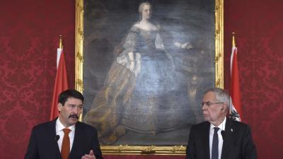 Áder János köztársasági elnök és Alexander Van Der Bellen (MTI/Bruzák Noémi)