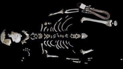 A neandervölgyi csontváza, a mellette levő dobozból előkerült ételfosszíliával