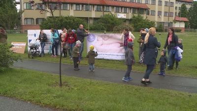 Élőlánccal az anya baba egységért – figyelem felhívó akciót rendeztek a békéscsabai kórház előtt. Fotó: Kugyelka Attila