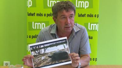 Kép: Ujházi György
