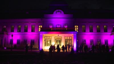 Számos épület, többek között a gyulai Almásy-kastély is lila színbe öltözik a világnapon (Fotó: behir.hu)