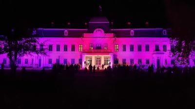 Lila fényben tündökölt az Almásy-kastély a koraszülöttek világnapján Fotó: Kovács Dénes