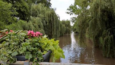 Az Élővíz-csatorna Békéscsabán (fotó: Milyó Pál)