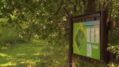 Az őshonos élőhelyeket, és fajokat őrzik a Pósteleki Természeti Emlékparkban Fotó: Bagi József