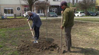 Fotó: Bagi József / behir.hu